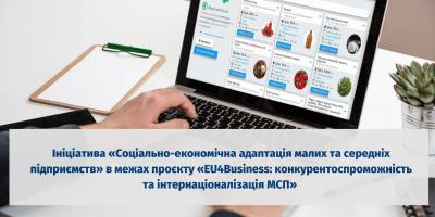 Проєкт Економічна адаптація малих та середніх підприємств (14)