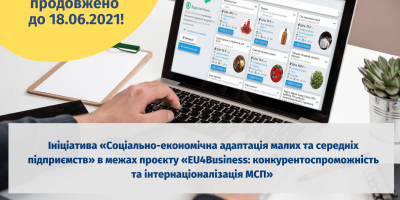 Проєкт Економічна адаптація малих та середніх підприємств (15)
