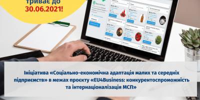 Проєкт Економічна адаптація малих та середніх підприємств (16)